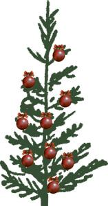 Julgran från Järla